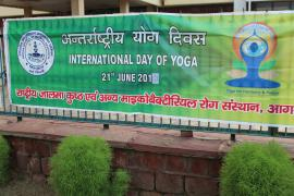 International Day of Yoga is celebrated in ICMR-JALMA, Agra with zeal and enthusiasm.